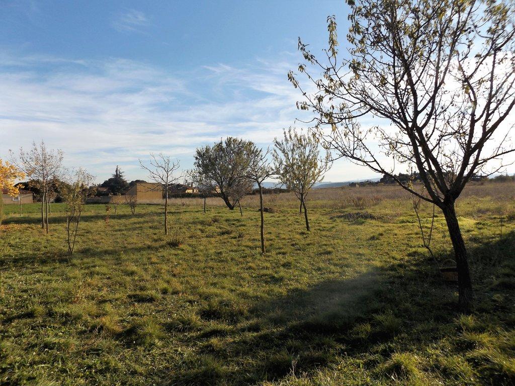 Terrains du constructeur IMMOBILIER DU MINERVOIS • 970 m² • TRAUSSE
