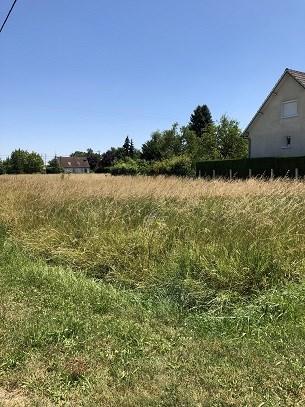 Terrains du constructeur SARL BRIGAULT IMMOBILIER • 460 m² • VILLEMANDEUR