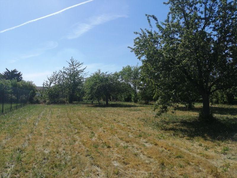 Terrains du constructeur IN VESTISS FRANCE • 0 m² • SACY LE GRAND