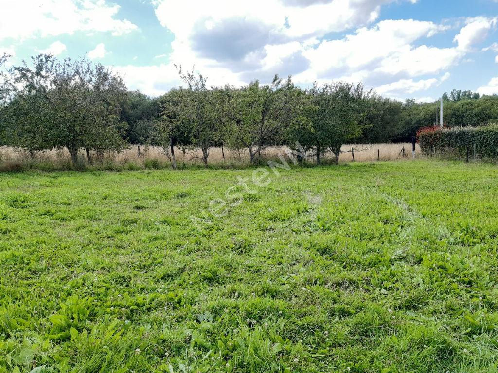 Terrains du constructeur NESTENN LOCMINE • 1011 m² • SAINT JEAN BREVELAY