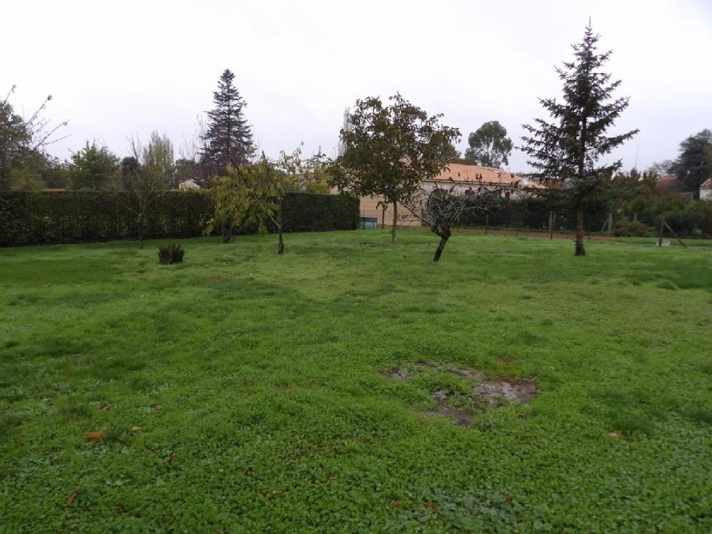 Terrains du constructeur icocc immobilier • 0 m² • CHASNAIS