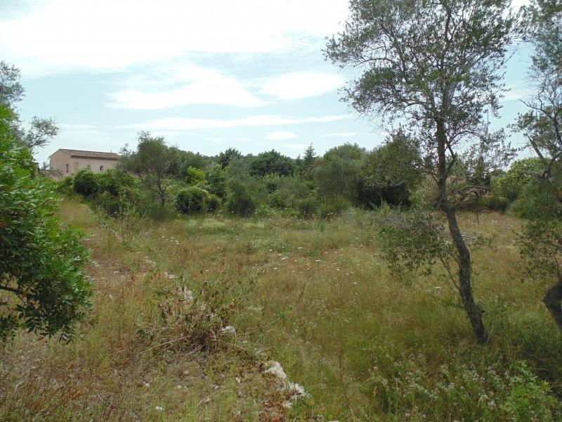 Terrains du constructeur GROUPE CBR • 2704 m² • PEYMEINADE