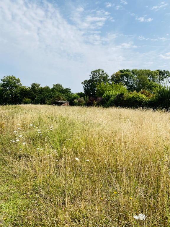 Terrains du constructeur SARL IMMOLYS 212 • 1400 m² • BLIGNY LES BEAUNE