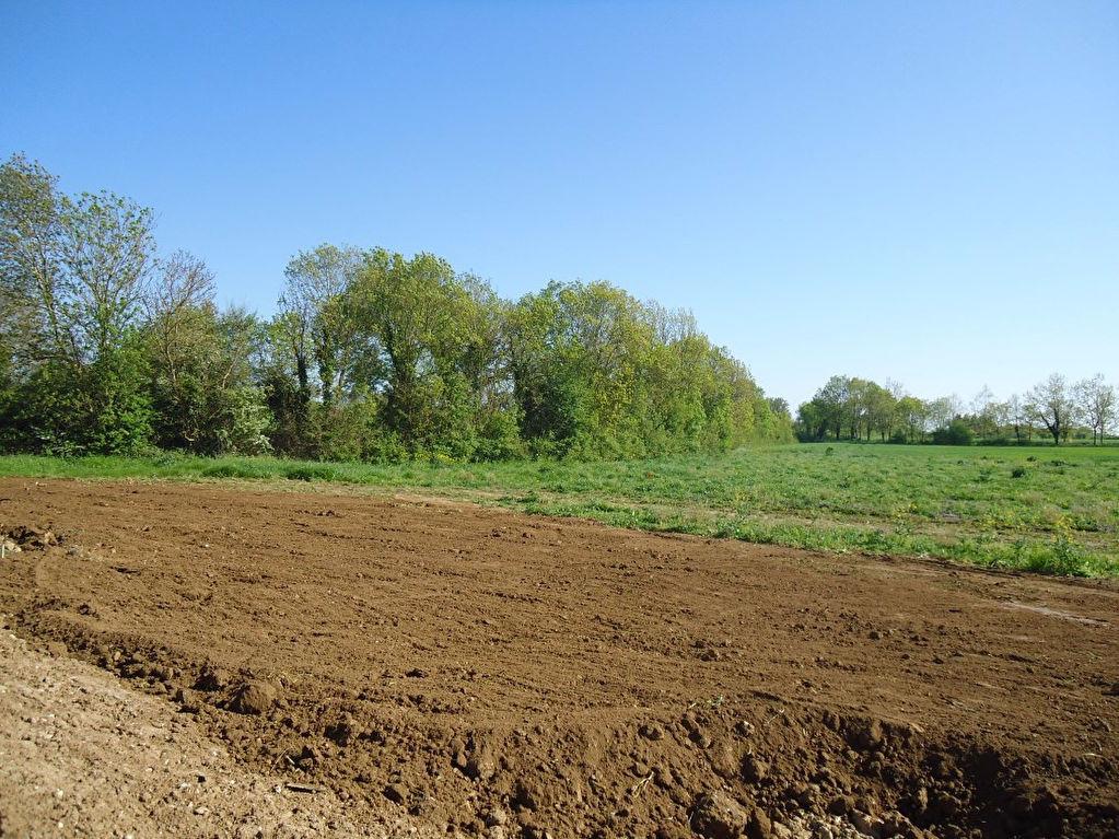 Terrains du constructeur L ADRESSE LONGEVILLE SUR MER • 425 m² • SAINT HILAIRE LA FORET