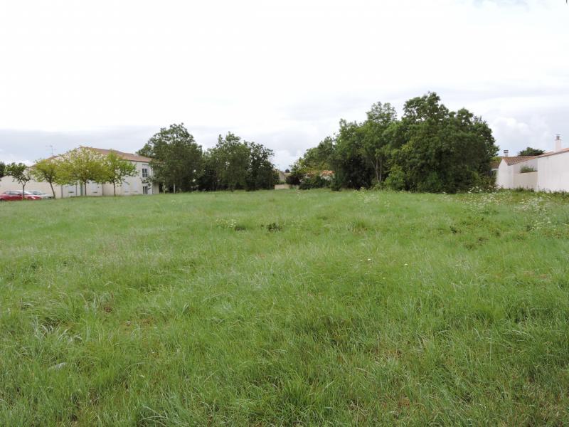 Terrains du constructeur A LA LUCARNE DE L IMMOBILIER • 3131 m² • SAINT PIERRE D'OLERON