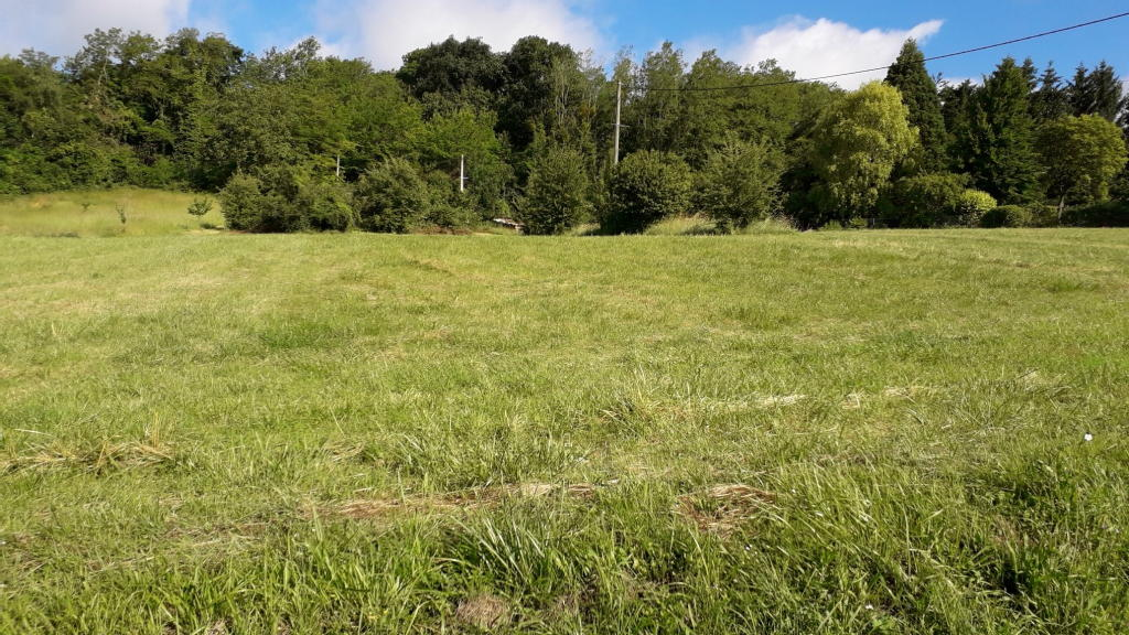Terrains du constructeur A4 IMMOBILIER • 2882 m² • SAINTE AULDE