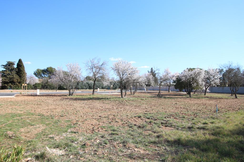 Terrains du constructeur ORPI CARPENTRAS IMMOBILIER • 635 m² • CARPENTRAS