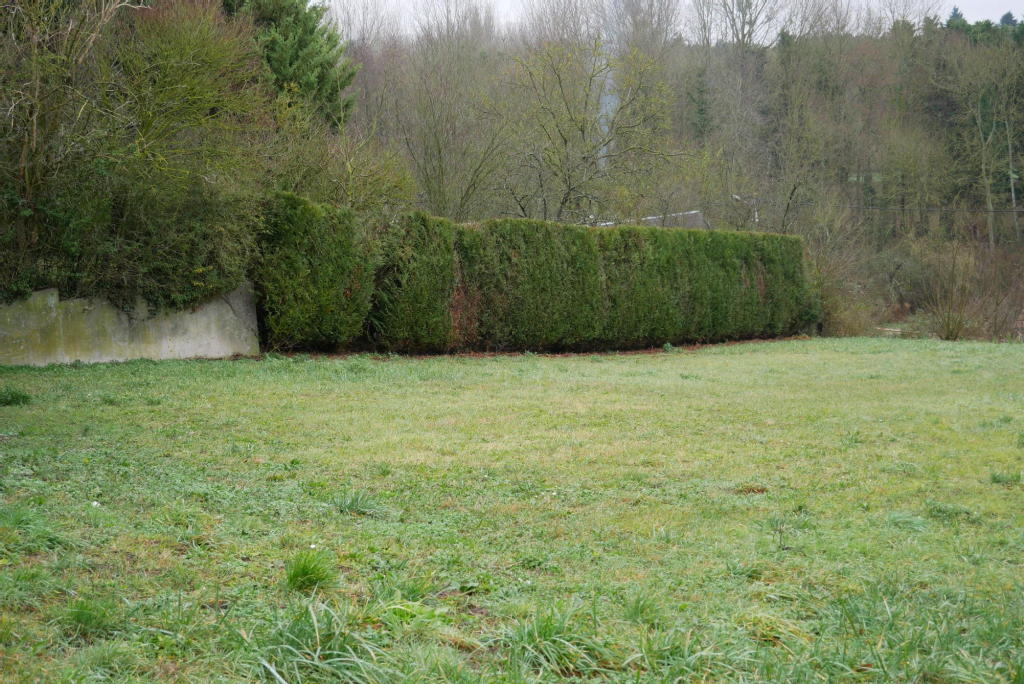 Terrains du constructeur PITHIVIERS IMMOBILIER • 850 m² • ESTOUY
