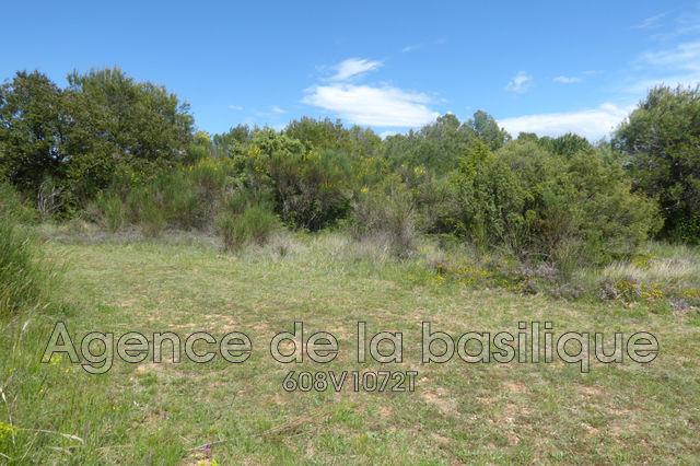 Terrains du constructeur AGENCE DE LA BASILIQUE • 4000 m² • SAINT MAXIMIN LA SAINTE BAUME