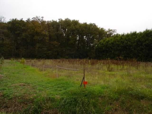 Terrains du constructeur AGENCE LOUBAT • 1100 m² • RICAUD