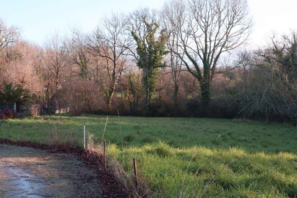 Terrains du constructeur SARZEAU IMMOBILIER • 800 m² • SARZEAU
