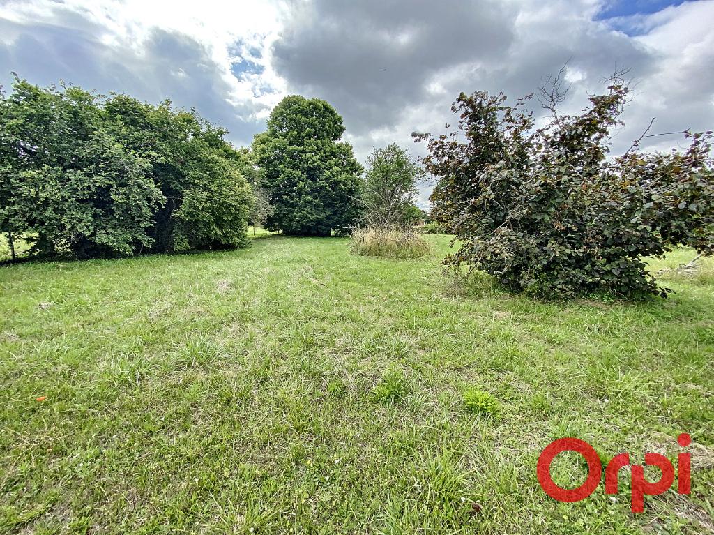 Terrains du constructeur ORPI LES HALLES • 2241 m² • SAINT AMAND MONTROND