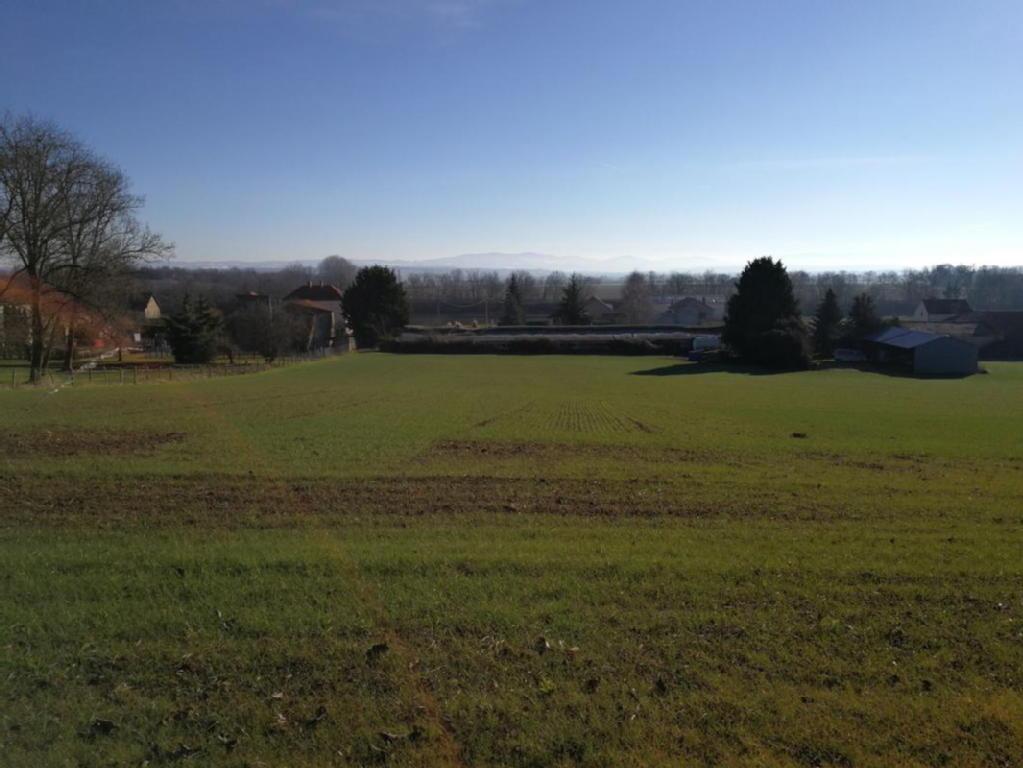 Terrains du constructeur EFFICITY • 2800 m² • MONTPENSIER