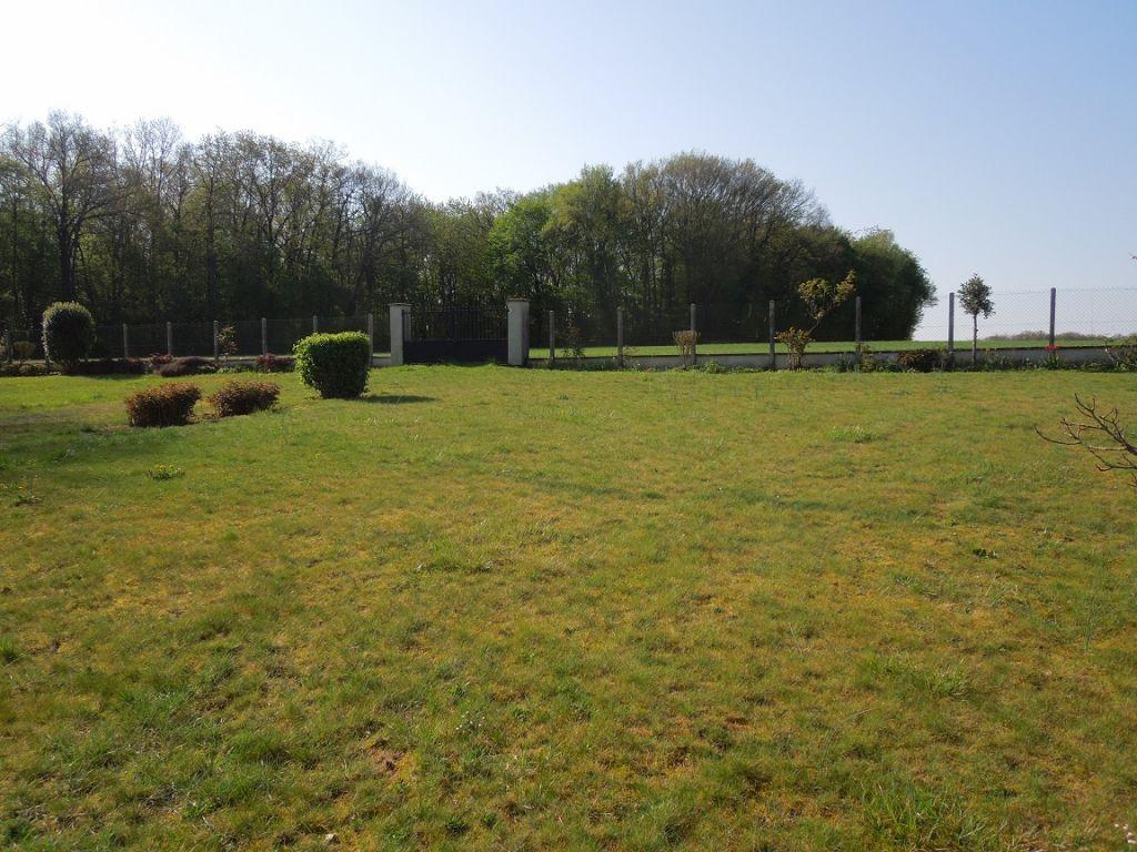 Terrains du constructeur IMMOTERRA • 0 m² • VILLEMARECHAL