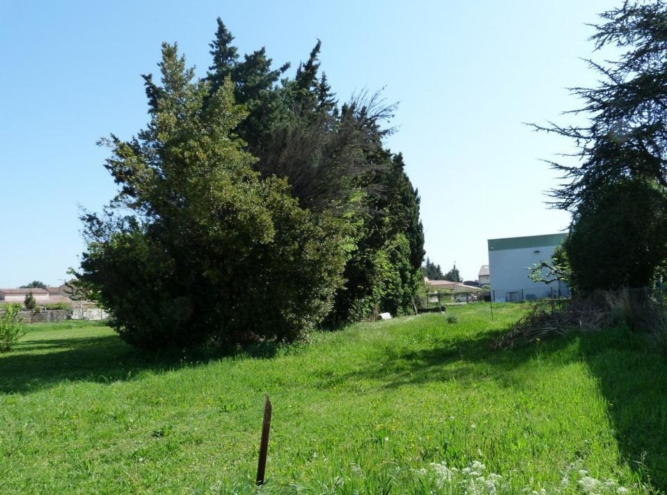 Terrains du constructeur CMAMAISON • 0 m² • AVIGNON