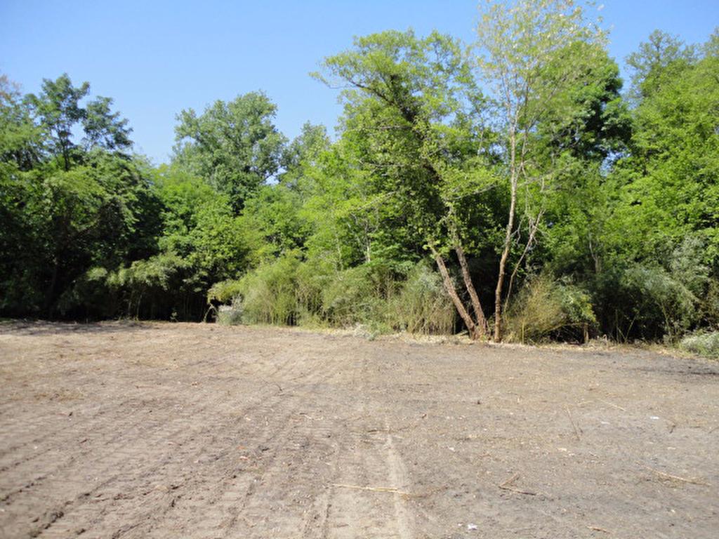 Terrains du constructeur ORPI AGENCE DE PONTONX • 726 m² • PONTONX SUR L'ADOUR