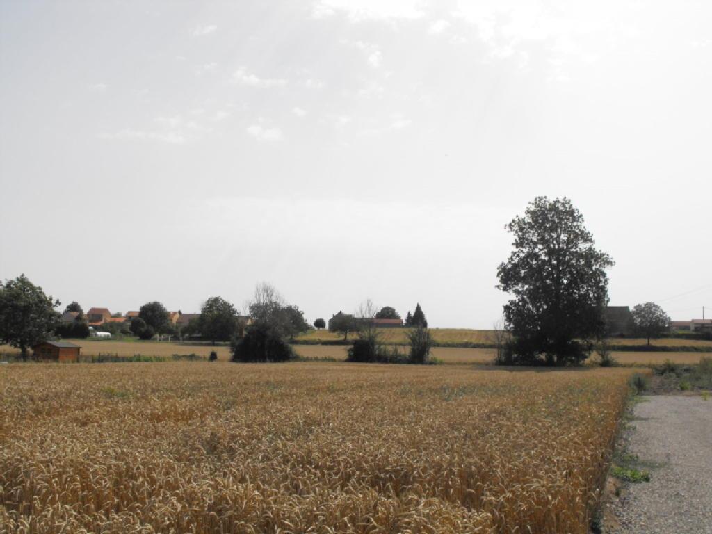 Terrains du constructeur JOUAN IMMOBILIER • 1644 m² • GANNAT