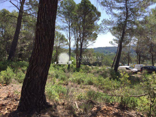 Terrains du constructeur AGENCE LES MIMOSAS • 0 m² • SALERNES