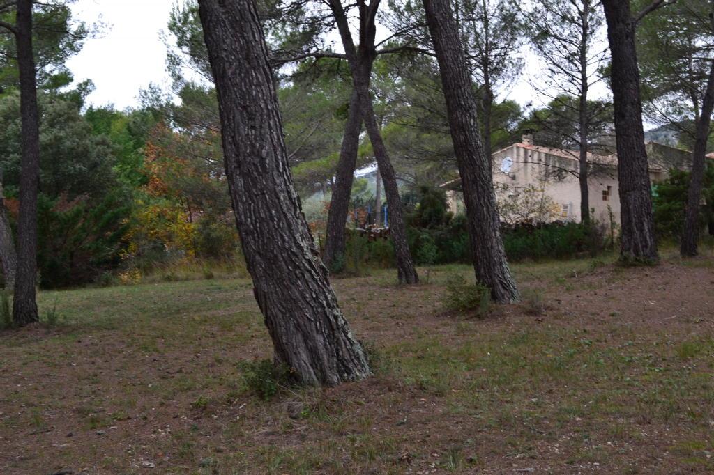 Terrains du constructeur RESEAU EXPERTIMO • 1091 m² • PUGET