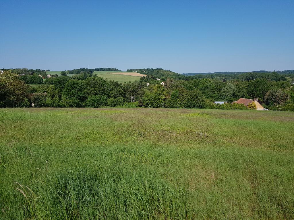 Terrains du constructeur ORPI AGENCE DE L'OUANNE • 5628 m² • DOUCHY