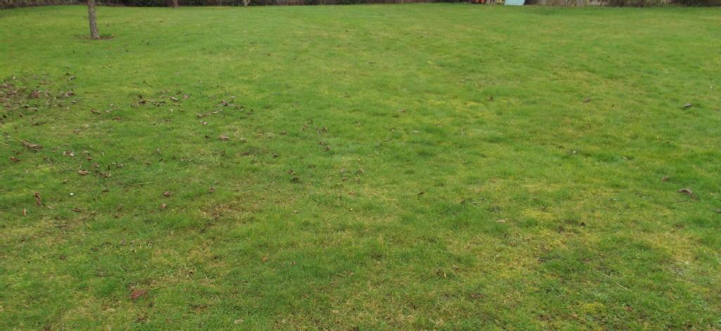 Terrains du constructeur IAD FRANCE • 1104 m² • LA NEUVILLE SUR RESSONS