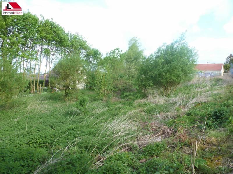 Terrains du constructeur Agence Lesage Immobilier • 1300 m² • TOURNY