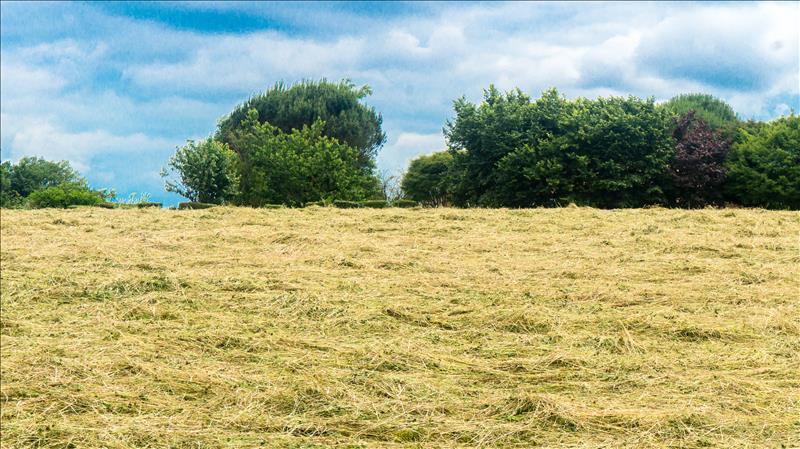 Terrains du constructeur GROUPE IMMO64 SERRES CASTET • 734 m² • SERRES CASTET