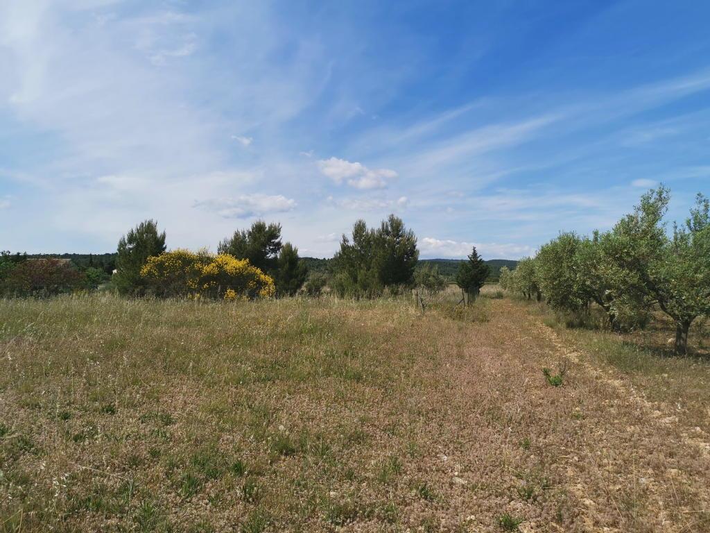 Terrains du constructeur TERRE DU SUD IMMOBILIER • 642 m² • ARGENS MINERVOIS