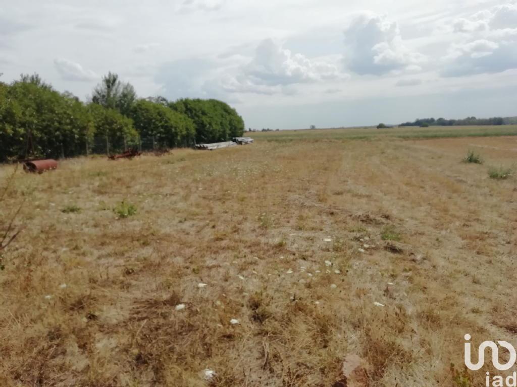 Terrains du constructeur IAD FRANCE • 1317 m² • BEAUMONT