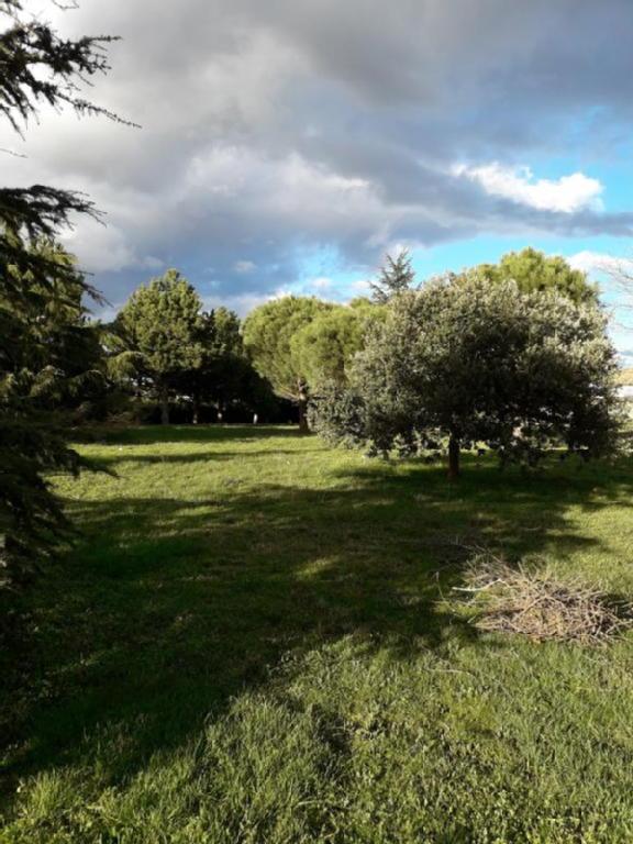 Terrains du constructeur RESEAU EV IMMOBILIER • 1342 m² • PLATS