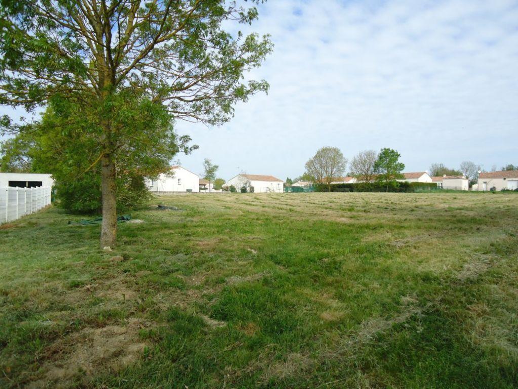Terrains du constructeur L ADRESSE LONGEVILLE SUR MER • 869 m² • SAINT HILAIRE LA FORET