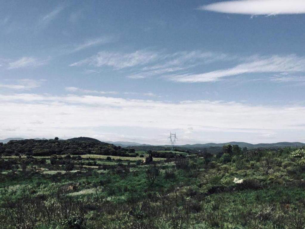Terrains du constructeur EFFICITY • 18510 m² • ROUJAN