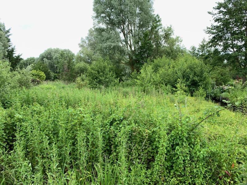 Terrains du constructeur ME CHAVANCE - ESCHBACH - PEMONT - NEVIASKI • 4983 m² • LONGUEAU