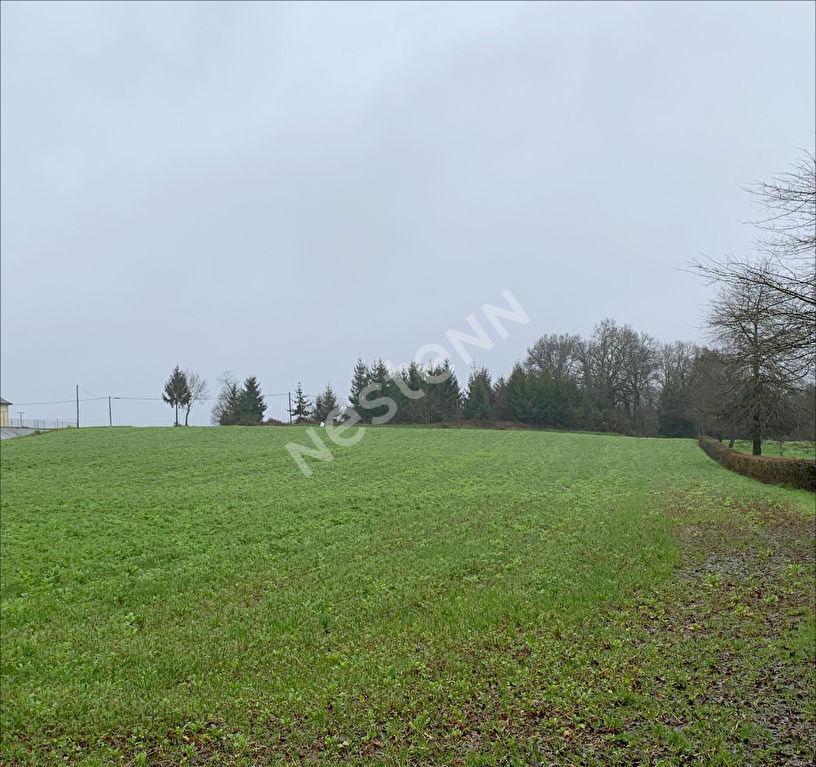 Terrains du constructeur NESTENN LOCMINE • 1134 m² • PLEUGRIFFET
