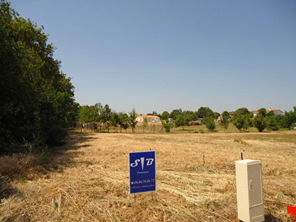 Terrains du constructeur L ADRESSE LONGEVILLE SUR MER • 958 m² • SAINTE GEMME LA PLAINE
