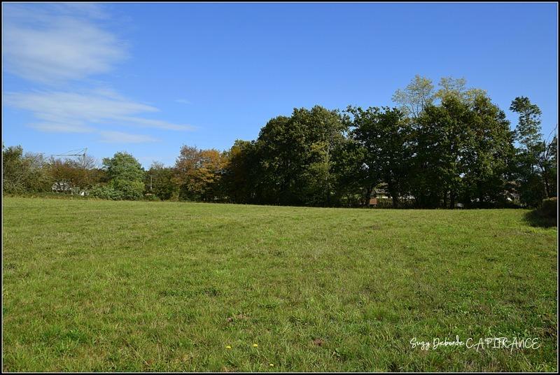 Terrains du constructeur CAPI FRANCE • 2000 m² • CHAROLLES