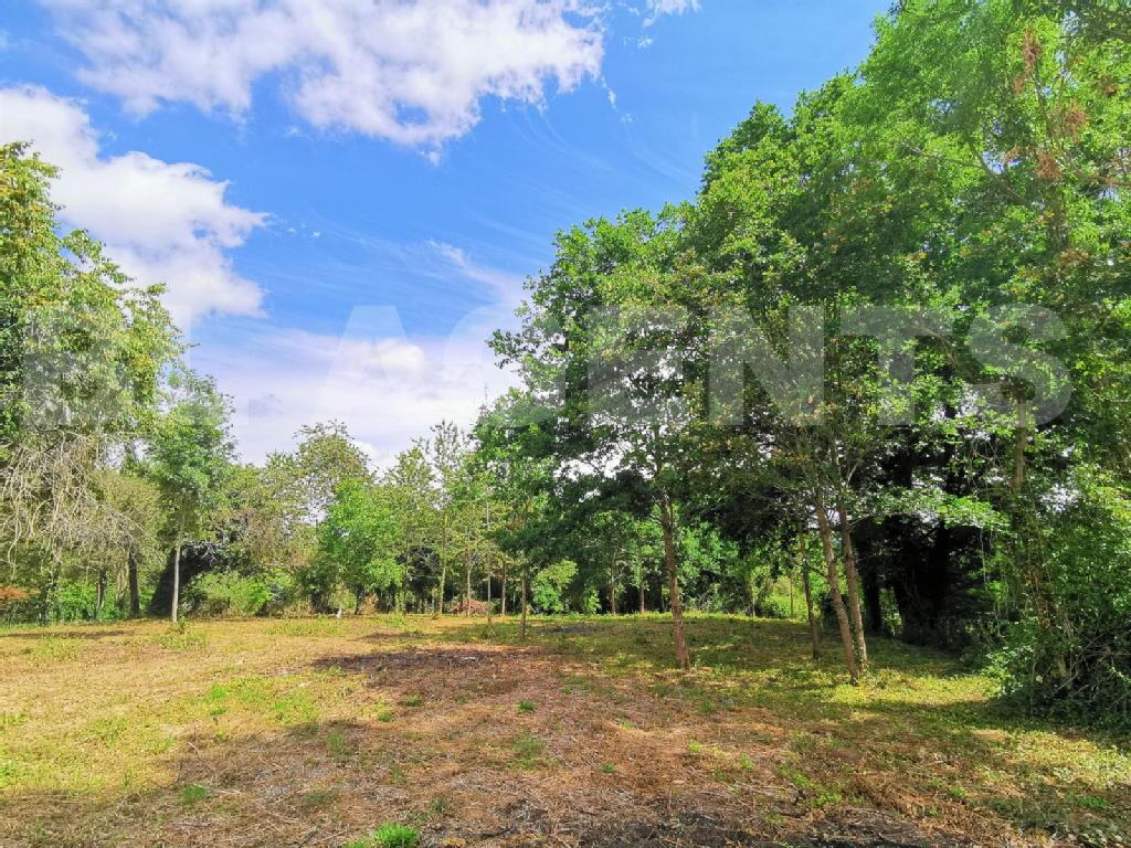 Terrains du constructeur BL AGENTS • 2608 m² • REBAIS