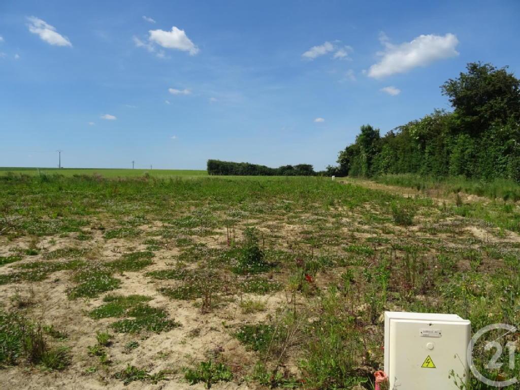 Terrains du constructeur CENTURY 21 - CHRISTOPHE DUCLOS • 1000 m² • SAINT MARTIN DU TILLEUL