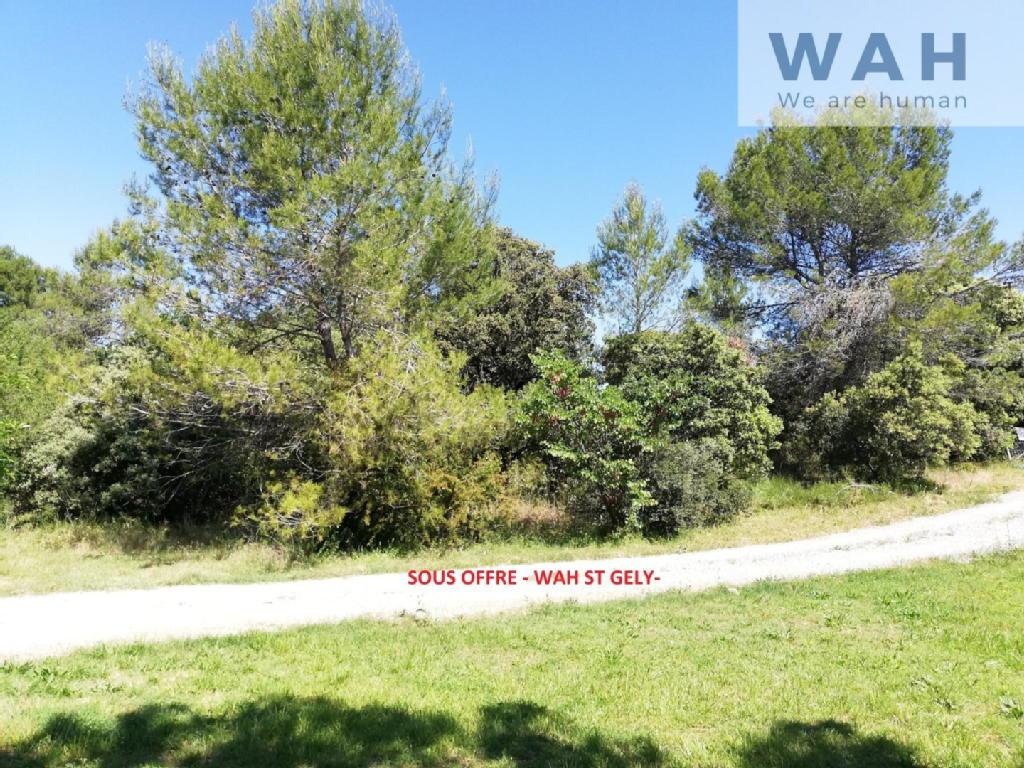 Terrains du constructeur WAH ST GELY DU FESC • 1075 m² • SAINT MATHIEU DE TREVIERS