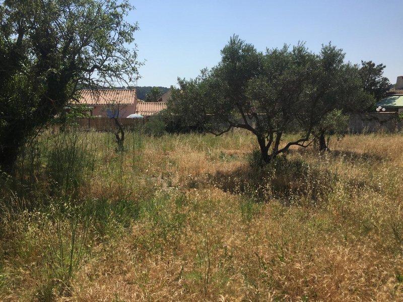 Terrains du constructeur VILLAS PRISME • 568 m² • SAINT CHAMAS