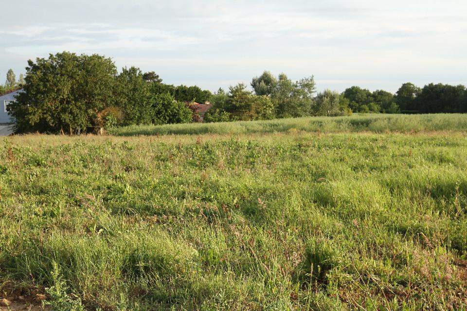 Terrains du constructeur BERMAX CONSTRUCTION • 439 m² • VOUNEUIL SOUS BIARD
