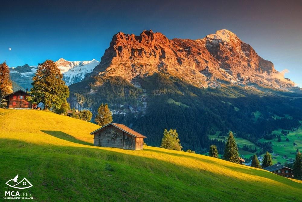 Terrains du constructeur M C A Maisons et Chalets des Alpes • 1000 m² • LESCHAUX