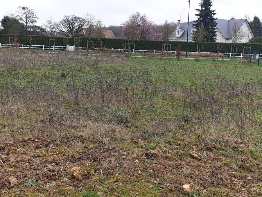 Terrains du constructeur Maisons i Montargis • 744 m² • PAUCOURT