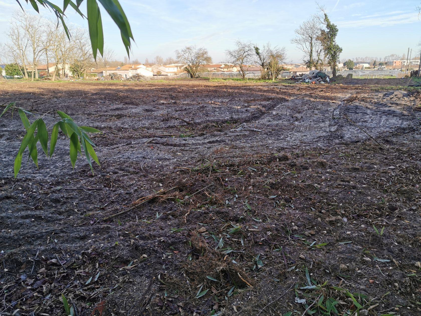 Terrains du constructeur MAISONS IDEOZ 33 • 306 m² • BRUGES