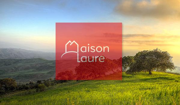 Terrains du constructeur E.T.B.V. - Maison Laure • 850 m² • VOUZAILLES