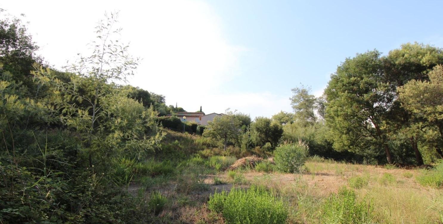 Terrains du constructeur LA MAISON DE LA CONSTRUCTION • 1568 m² • SAINTE MAXIME
