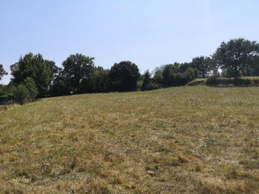 Maison+Terrain à vendre .(83 m²)(LEZAT SUR LEZE) avec (Maisons France Confort)
