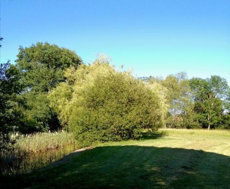 Maison+Terrain à vendre .(110 m²)(SAINT LYS) avec (MAISONS FRANCE CONFORT)
