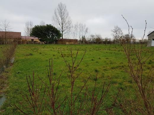 Maison+Terrain à vendre .(110 m²)(MARCHEMAISONS) avec (MAISONS FRANCE CONFORT)