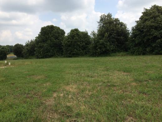 Terrain à vendre .(483 m²)(SAINT OUEN D'AUNIS) avec (MAISONS ARLOGIS ROCHEFORT)